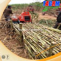 TAGRM Mini Sugarcane Peeling Machine For Sugarcane Leaf Removing 6BZ-5 Widely Use In India