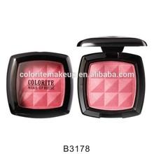 Beauty Cosmetic profassional blusher palette/Silky Powder Blush
