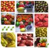 wholesale artificial fruit for decoration