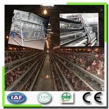 Cheap Price African Market Chicken Battary Cages Bird Breeding Cage
