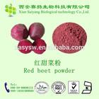red beet powder, sugar beet powder, beet juice powder