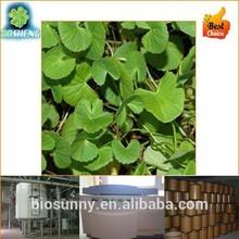 Free Sample GMP manufacturer Herb Radix sileris Extract Powder