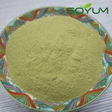 matcha flavor konjac powder /low calorie konjac drink