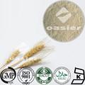 Fabricación gmp suministro de semillas de avena 70% extracto beta glucano de la aoac