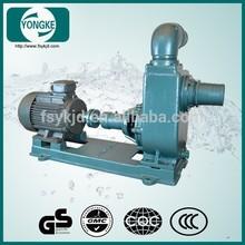 High pressure water pump,centrifugal pump,stainless steel garden pump