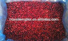 frozen wild lingonberries