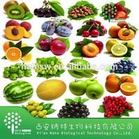 Best-Selling Fruit Powder/artificial fruit flavor powder