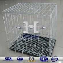 bird cute pet cage