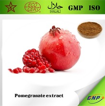 BNP Supply High Quality Pomegranate Seeds Extract Powder