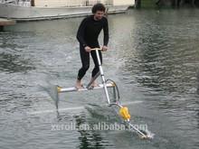 Water park games waterbird water skipper aqua bike hydrofoil
