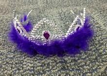 Plastic Crown