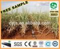 De riego dayu- los agricultores camiones tubo por goteo para la caña de azúcar libre de la muestra