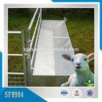 Australian Sheep And Goat Fence