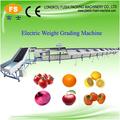 electrónico de tomate y el lavado de la máquina de clasificación