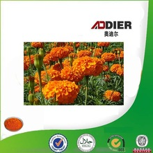 Professional Manufacturer Marigold Extract Powder Lutein