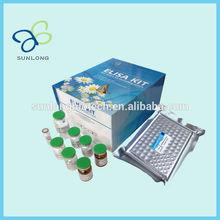 2015 New Rat Angiotensin II converting enzyme,ACEII ELISA Kit