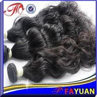 Wholesale price full cuticle 6A grade no lice brown 100% unprocessed virgin cabelos indianos