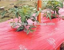 Red Plastic Mulch 30um