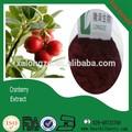 Los precios de arándano, frescas frutas arándano para la venta de arándanos secos orgánicos