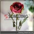 2014 sıcak satış yapay çiçek, dinamik gül, uzun gül ev otel düğün ofis dekorasyon