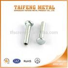galvanized carbon steel flat head semi-hollow square neck tubular rivets
