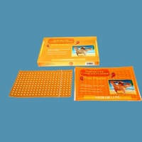 Pain Relief Chilli Plaster for Thermotherapy in Cases of Rheumatism, Lumbago, Scitica, Distortion