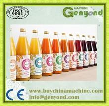 industrial pineapple belt type fruit juice extractor machine