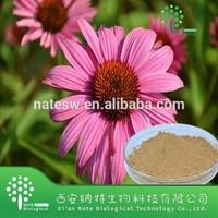 100% pure Echinacea Extract Powder Phenolic Compound