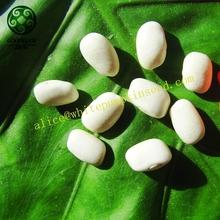 2014 Crop 200~220pcs Medium White Square Kidney Beans