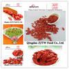 chinese dried fruit goji berries