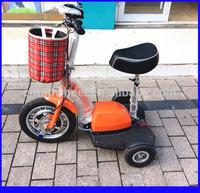 Green Vehicle 48V 500W Brushless Motor Adult Three Wheel Electric Bike