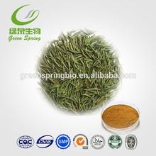 Green Tea Extract Polyphenol 90%, Catechins 70%, EGCG 40%