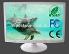 "19"" Widescreen LCD Display 12V DC"