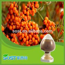 china alibaba seabuckthorn oil powder