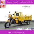Yingang 200CC motorizado de adultos triciclos