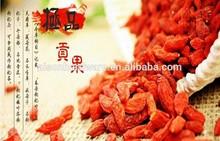 Natural Dried Goji berry Chinese High Quality Red Ningxia Bulk Organic Fresh Dried Goji Berry