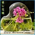 sprey cam vazo cam vazo resimleri