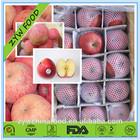 Fresh Apple Chinese Apple Fruit Fuji Apple Specification