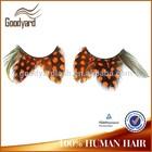 private label case Wholesale 2014 fashion colorful feather false eyelashes