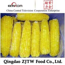 frozen sweet corn, frozen vegetable and fruit