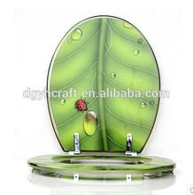 Transparent resin toilet seat