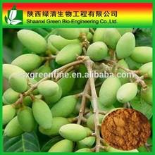 Cosmetic grade Antioxidant hydroxytyrosol, Hydroxytyrosol synthesis Olive leaf extract powder with GMP factory supply