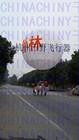 gaint balloon/china giant balloon/custom giant ballon