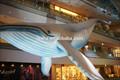 pubblicità ginat gonfiabile balena blu per la vendita