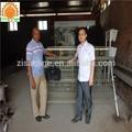 batterie poule poules pondeuses cages pour la vente en chine