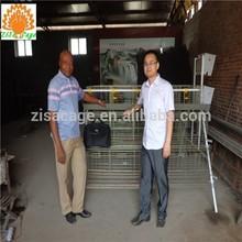 Batterie poule cages poules pondeuses à vendre en chine