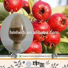 Chinese new harvest lot stock Hawthorn Extract maslinic acid HIV immunity