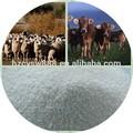 Crevettes et d'alimentation de la vache rumen laitiers protégé méthionine, rumen protégées méthionine animaux, feed grade fabricant de la chine