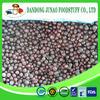 IQF frozen wholesale organic blackcurrant A grade & B grade in frozen fruit
