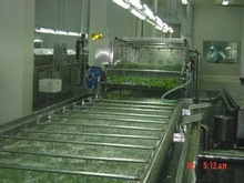 Online cleaning and automatic sorting machine for cherry tomato fruit